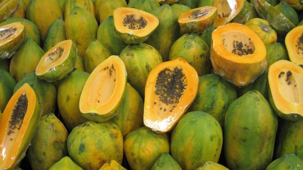 Why I Love GMO Papaya